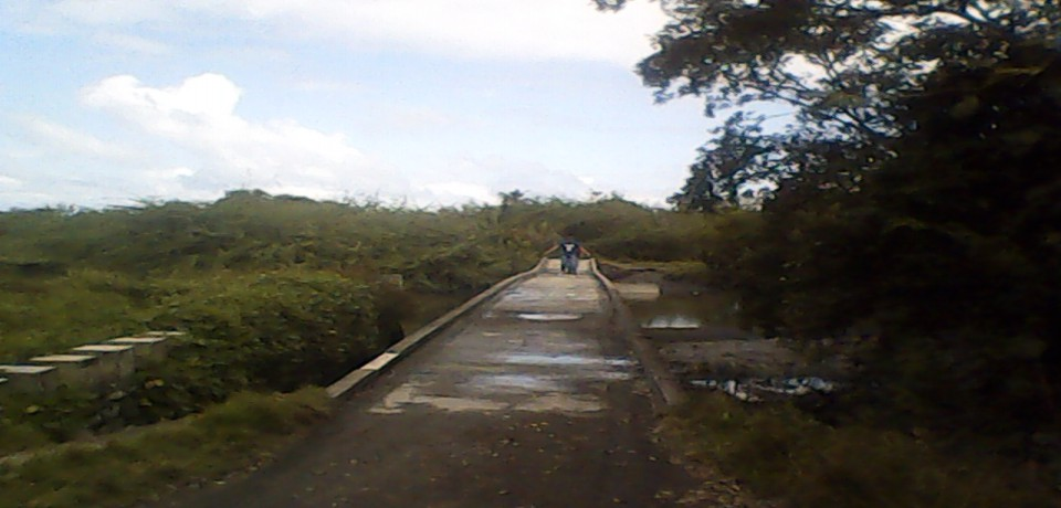 FOR SALE: Lot / Land / Farm Mindoro Oriental 5