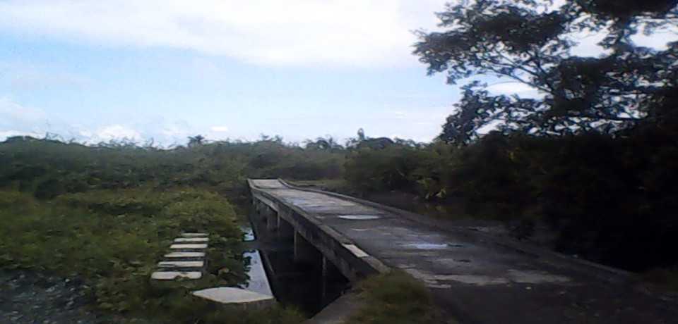 FOR SALE: Lot / Land / Farm Mindoro Oriental 6