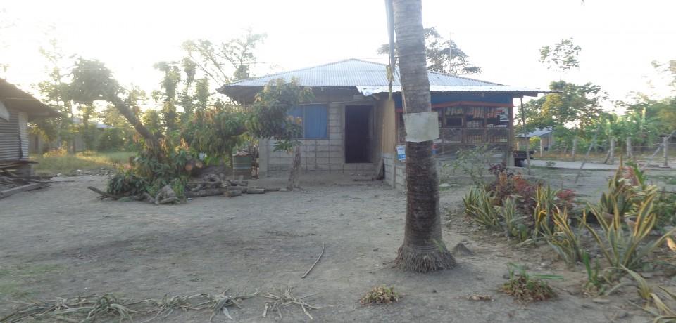 FOR SALE: Apartment / Condo / Townhouse Nueva Ecija