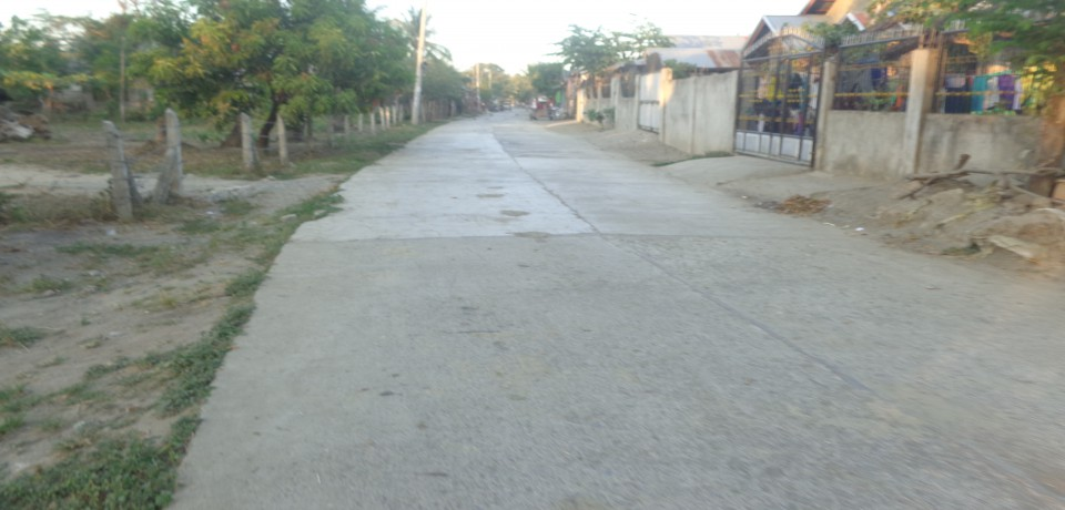 FOR SALE: Apartment / Condo / Townhouse Nueva Ecija 3