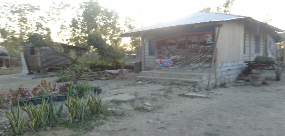 FOR SALE: Apartment / Condo / Townhouse Nueva Ecija 6