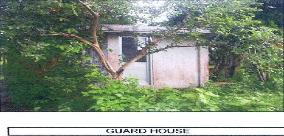FOR SALE: House Camarines Sur 1