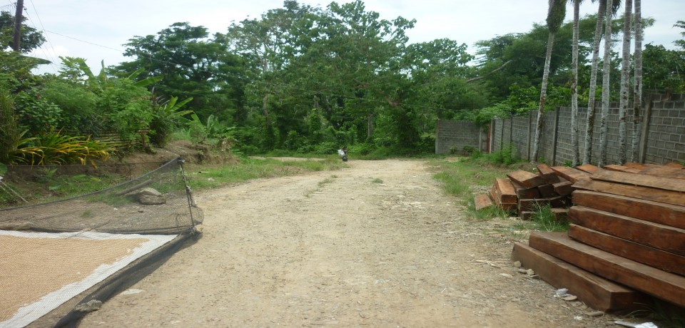 FOR SALE: Lot / Land / Farm Capiz 3