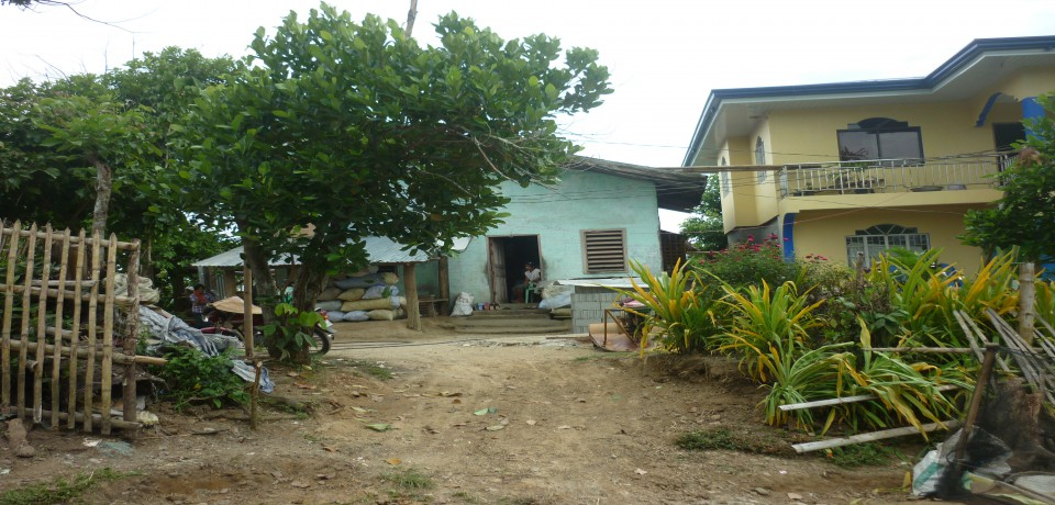 FOR SALE: Lot / Land / Farm Capiz 9