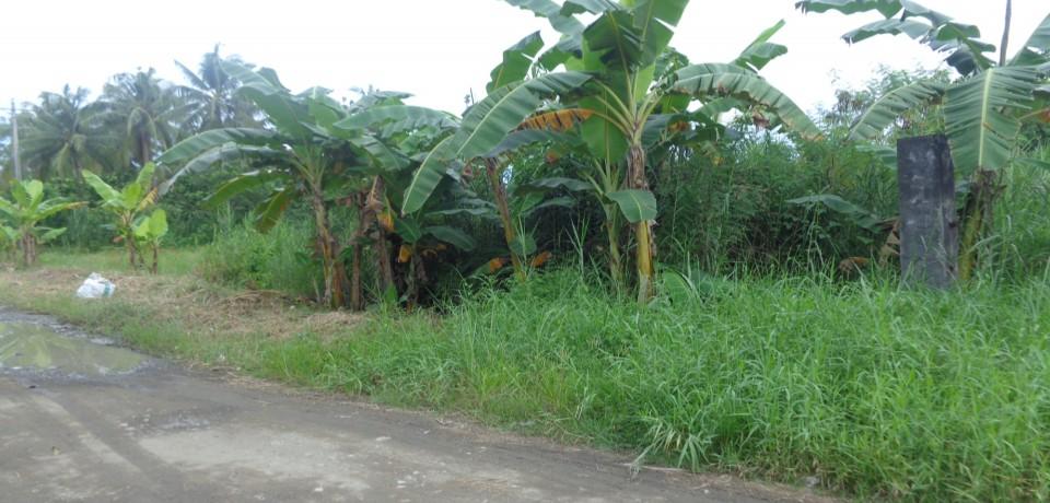 FOR SALE: Apartment / Condo / Townhouse Agusan del Norte