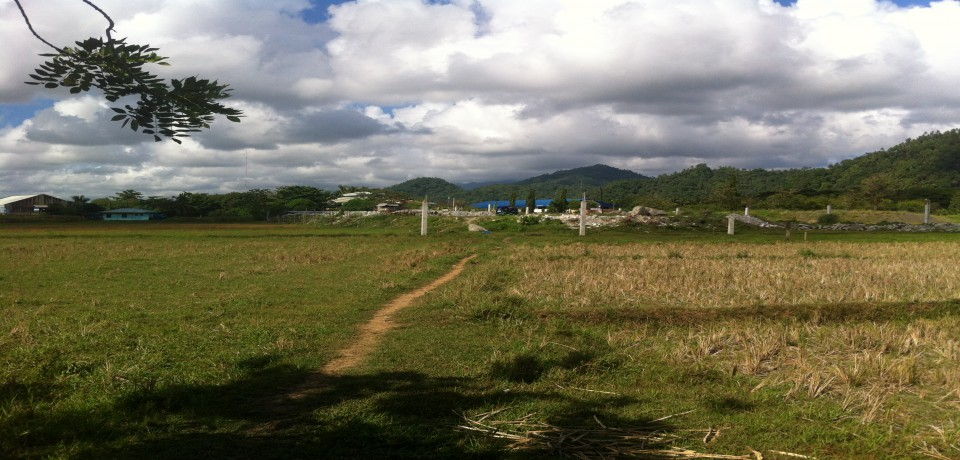 FOR SALE: Lot / Land / Farm Surigao del Norte 3