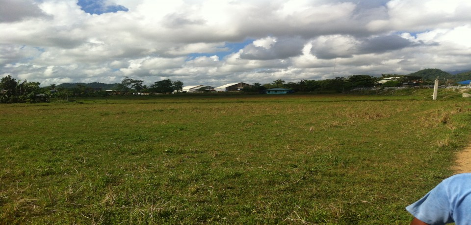 FOR SALE: Lot / Land / Farm Surigao del Norte 4