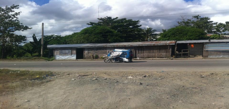 FOR SALE: Lot / Land / Farm Surigao del Norte 8