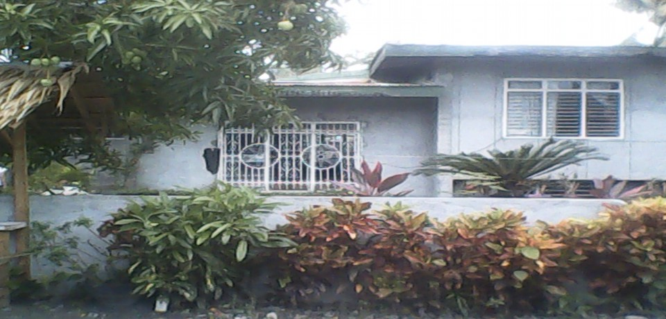 FOR SALE: House Mindoro Oriental