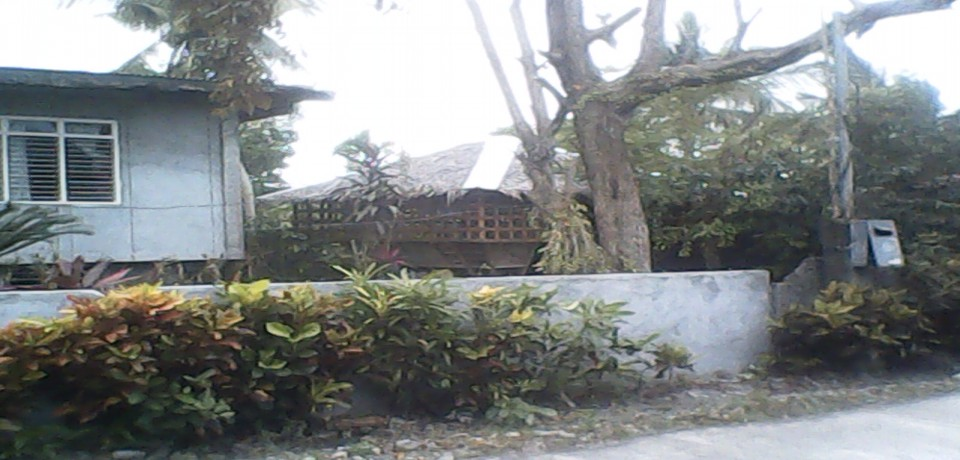 FOR SALE: House Mindoro Oriental 1