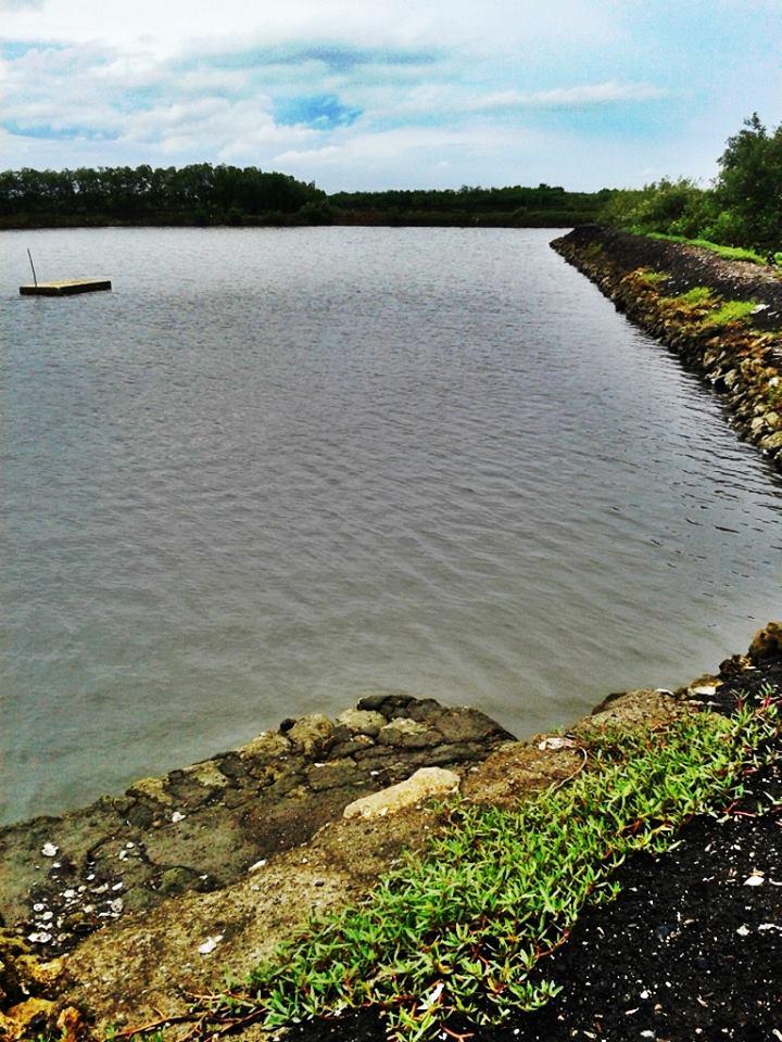FOR SALE: Lot / Land / Farm Cebu > Mactan