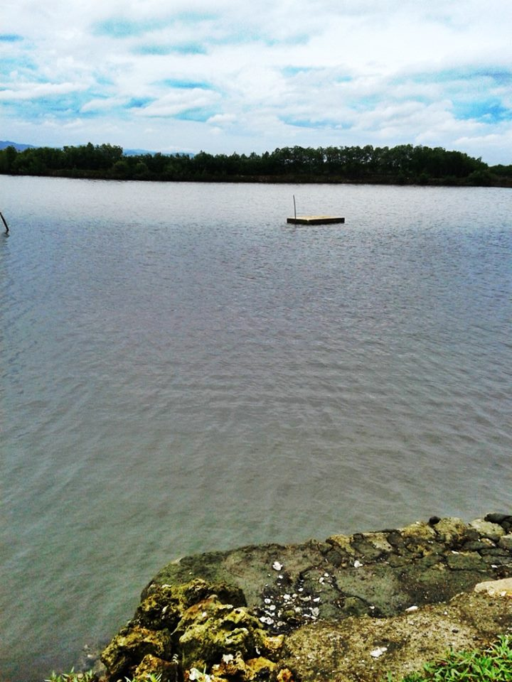 FOR SALE: Lot / Land / Farm Cebu > Mactan 1