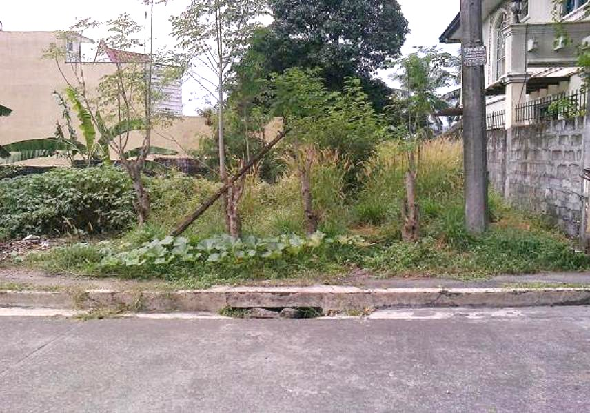 FOR SALE: Lot / Land / Farm Manila Metropolitan Area > Quezon 6