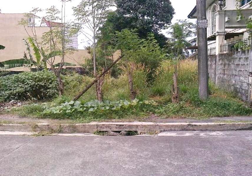 FOR SALE: Lot / Land / Farm Manila Metropolitan Area > Quezon 5