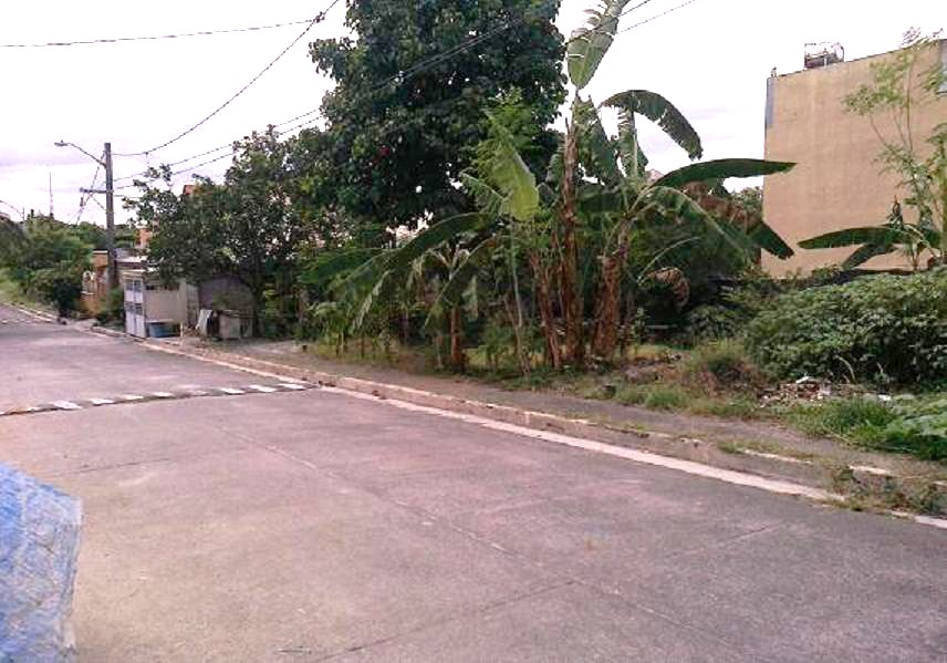 FOR SALE: Lot / Land / Farm Manila Metropolitan Area > Quezon 5