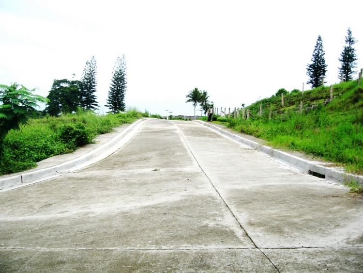 FOR SALE: Lot / Land / Farm Tagaytay 8