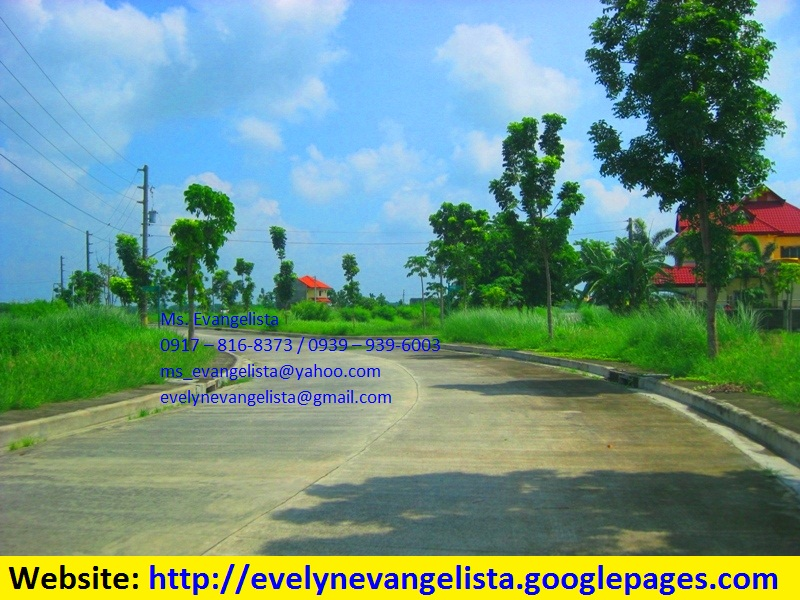 FOR SALE: Lot / Land / Farm Pangasinan 1