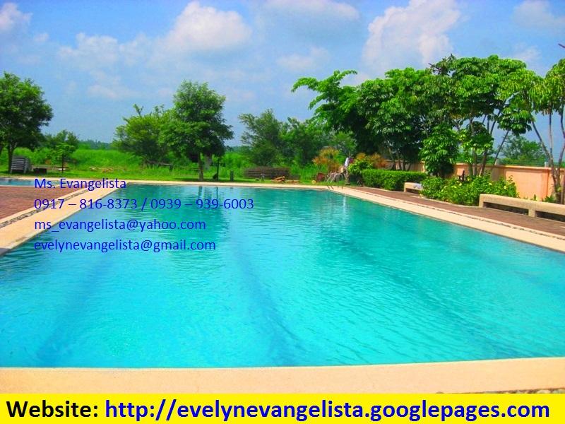 FOR SALE: Lot / Land / Farm Pangasinan 1
