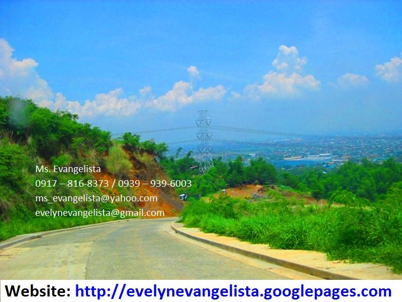 FOR SALE: Lot / Land / Farm Rizal 5