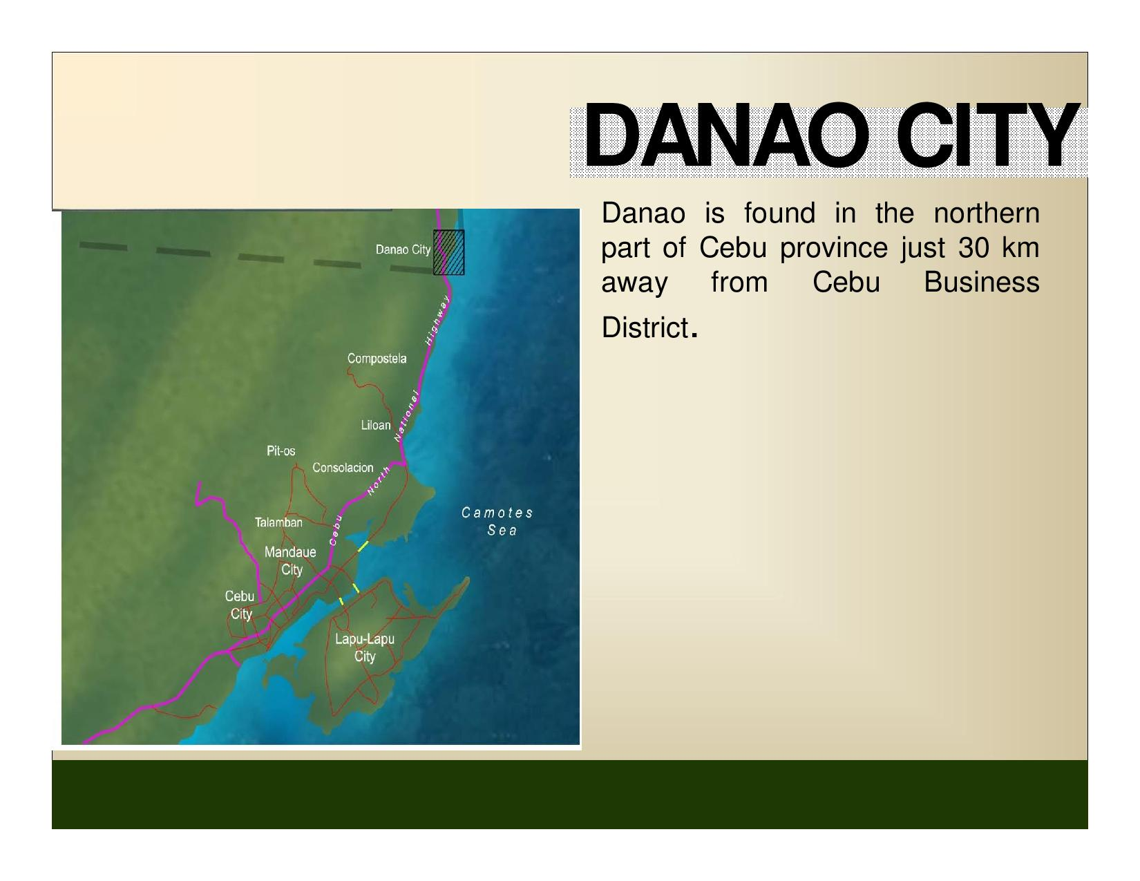 FOR SALE: Apartment / Condo / Townhouse Cebu > Danao 14