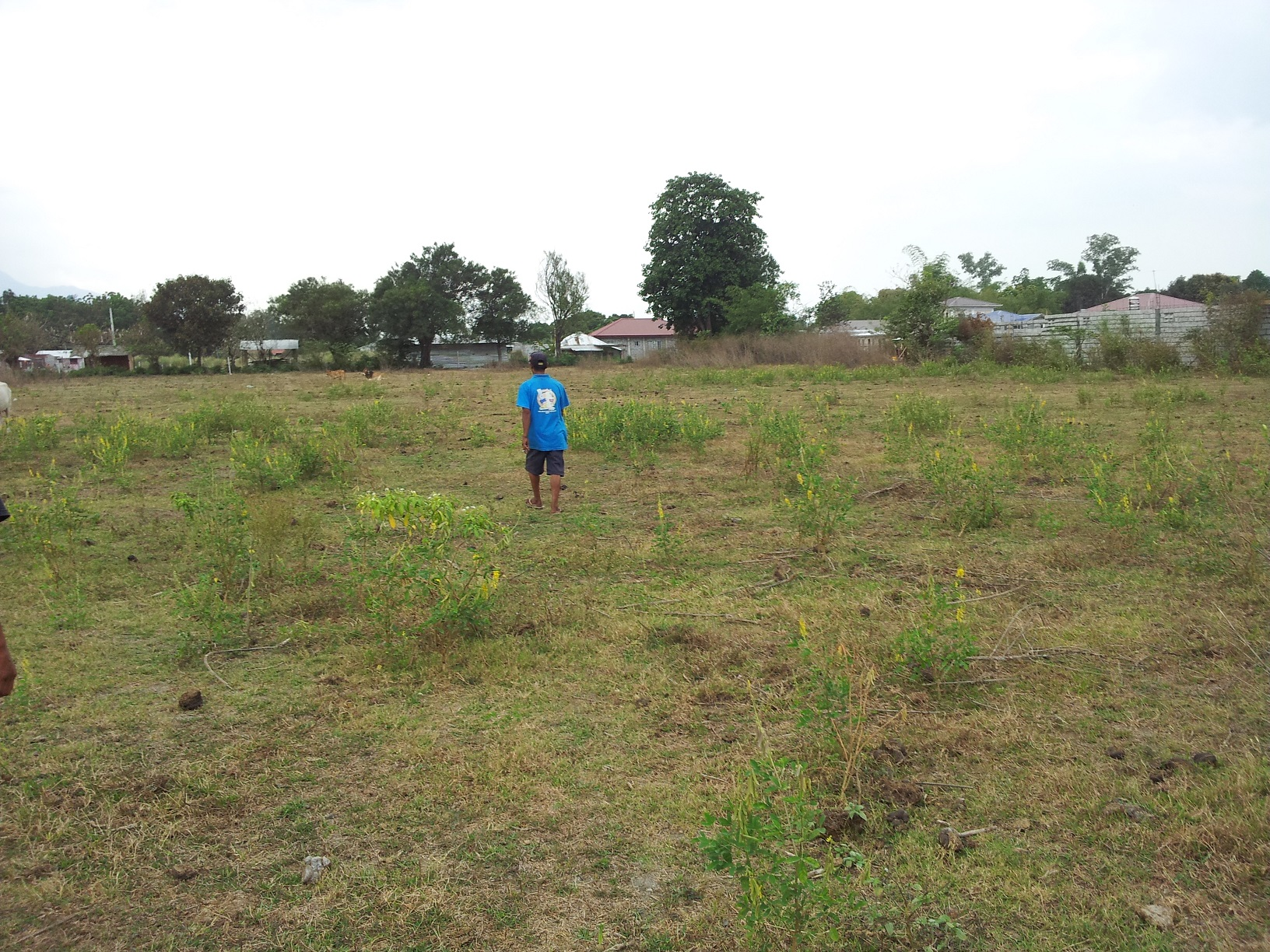 FOR SALE: Lot / Land / Farm Zambales > Other areas