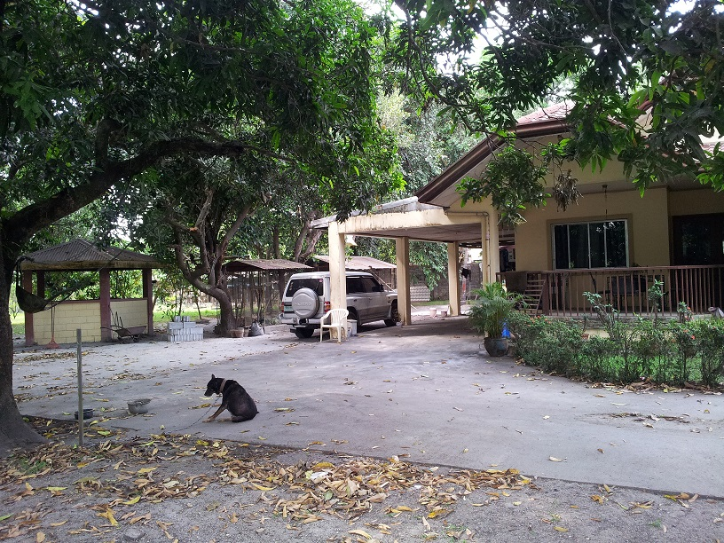 FOR SALE: House Zambales > Other areas 1