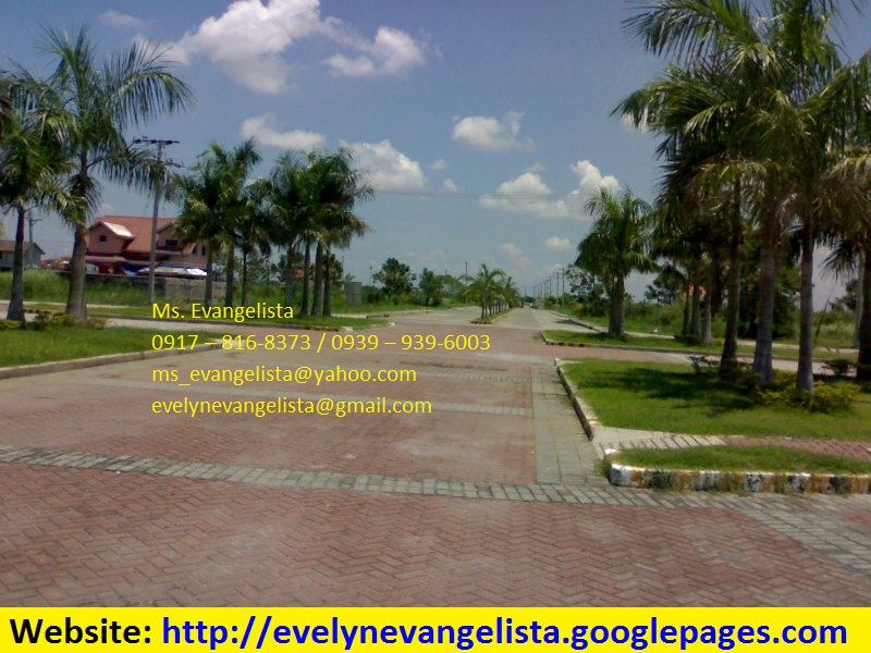 FOR SALE: Lot / Land / Farm Nueva Ecija > Cabanatuan 4