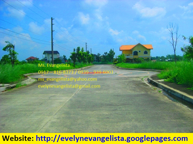 FOR SALE: Lot / Land / Farm Pangasinan 3