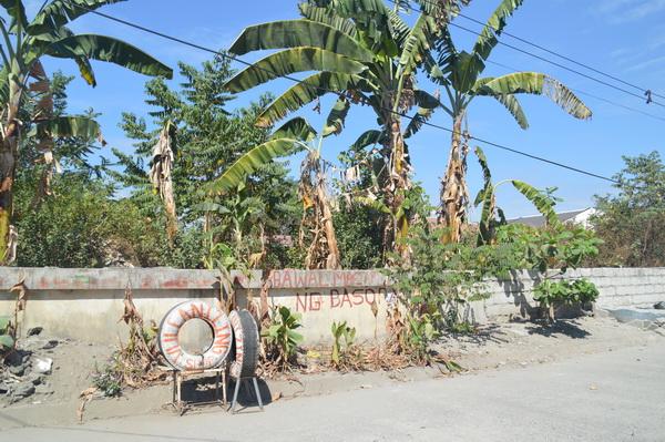 FOR SALE: Lot / Land / Farm Pampanga > Angeles City