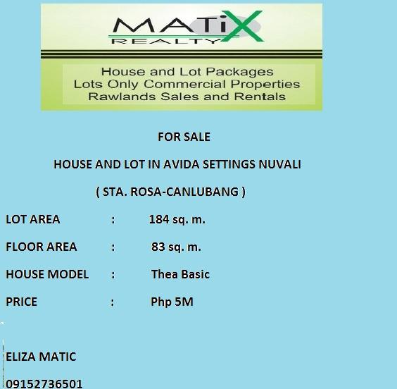 Avida Settings Nuvali Thea House & Lot