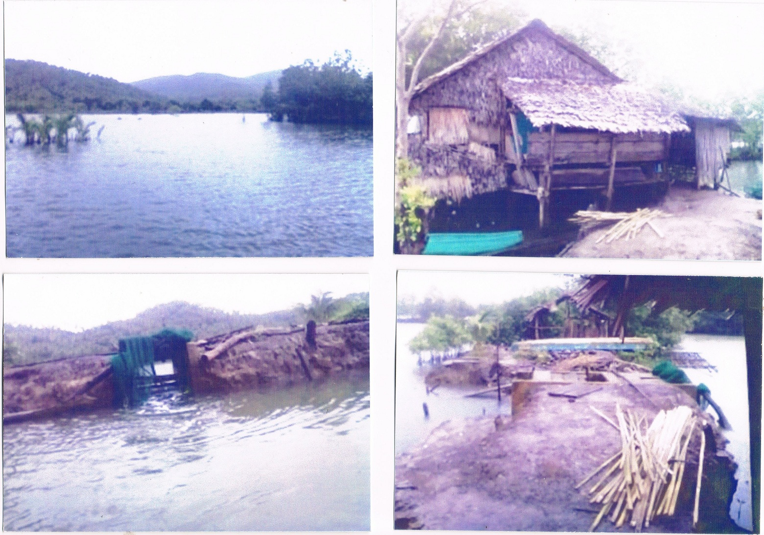 FOR SALE: Lot / Land / Farm Camarines Norte 2