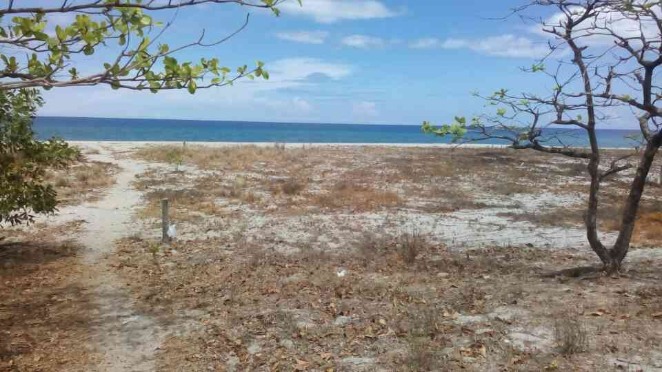 FOR SALE: Beach / Resort Zambales > Other areas 6