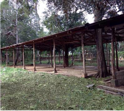 FOR SALE: Lot / Land / Farm Palawan > Puerto Princesa City