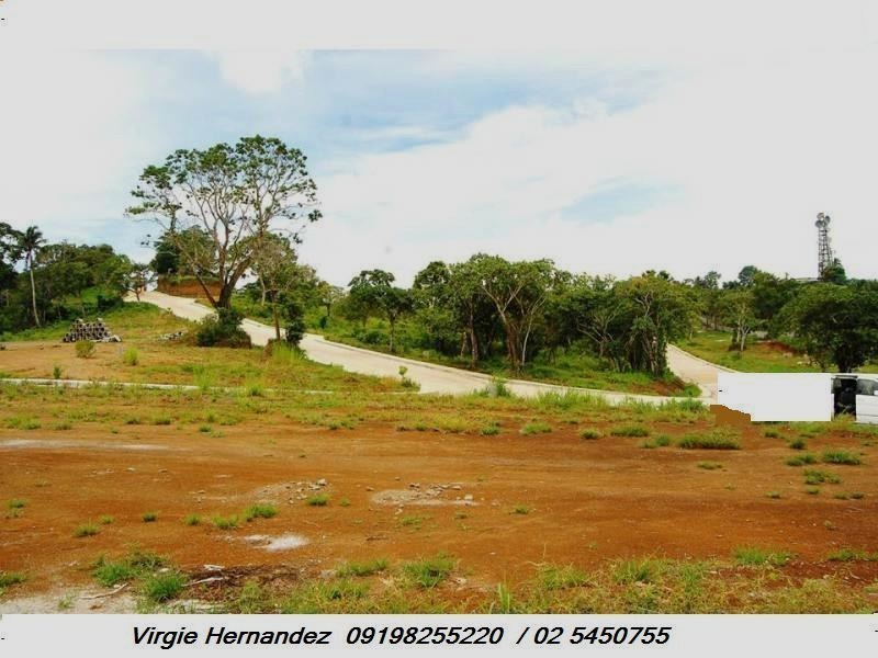 FOR SALE: Lot / Land / Farm Tagaytay 6