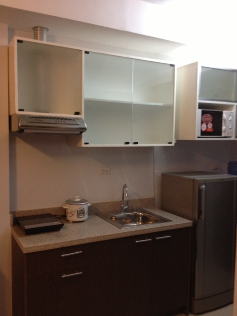 Sink & Cabinet Area