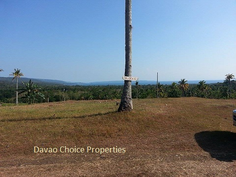 FOR SALE: Lot / Land / Farm Davao del Sur > Samal 1