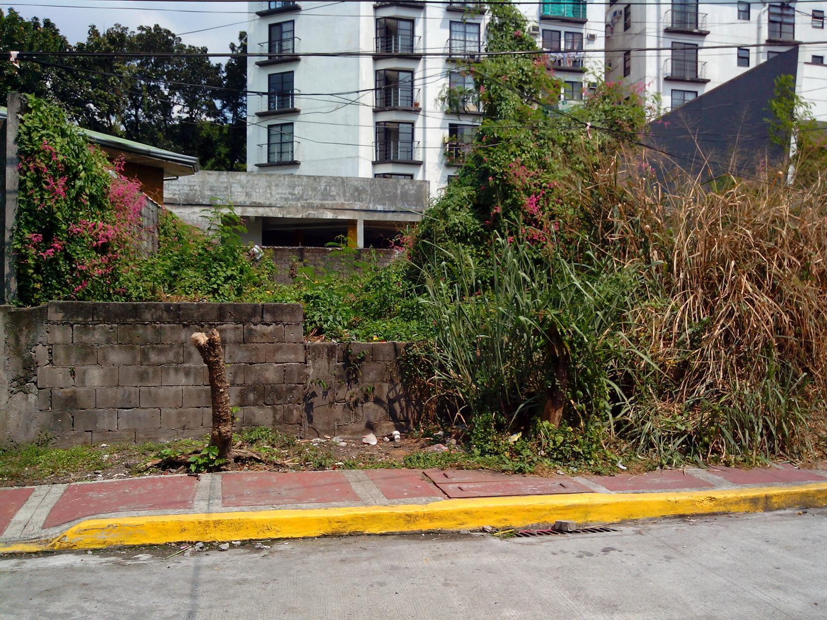 Dona Faustina 2, Bgy. Culiat, Quezon city