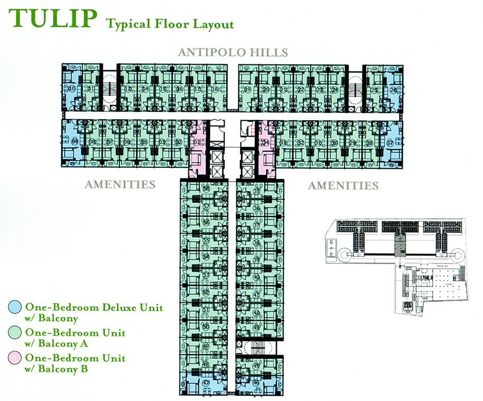 Grace Tulip floor plan