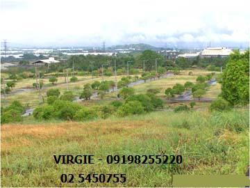 FOR SALE: Lot / Land / Farm Laguna > Calamba 6