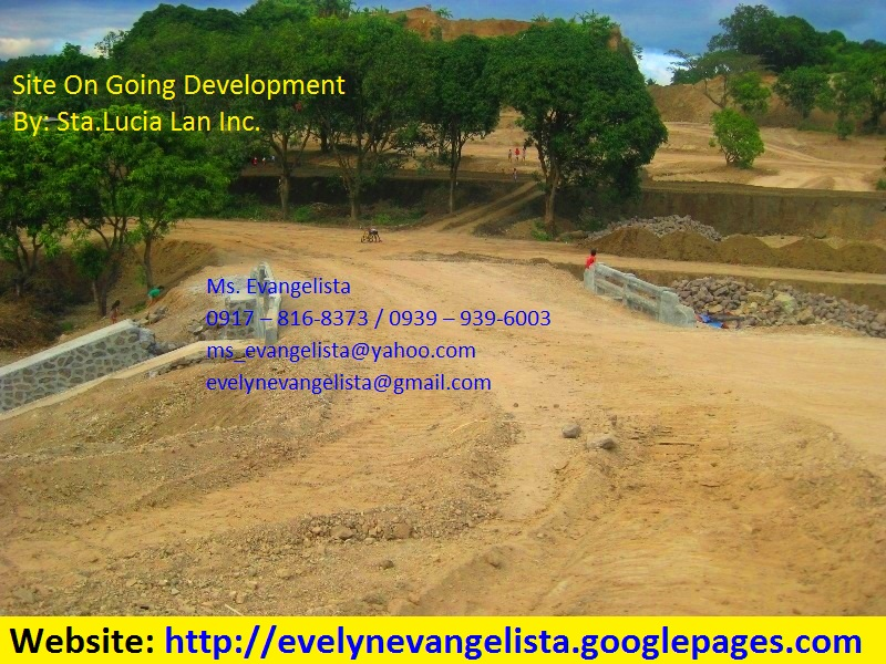 FOR SALE: Lot / Land / Farm Rizal 3
