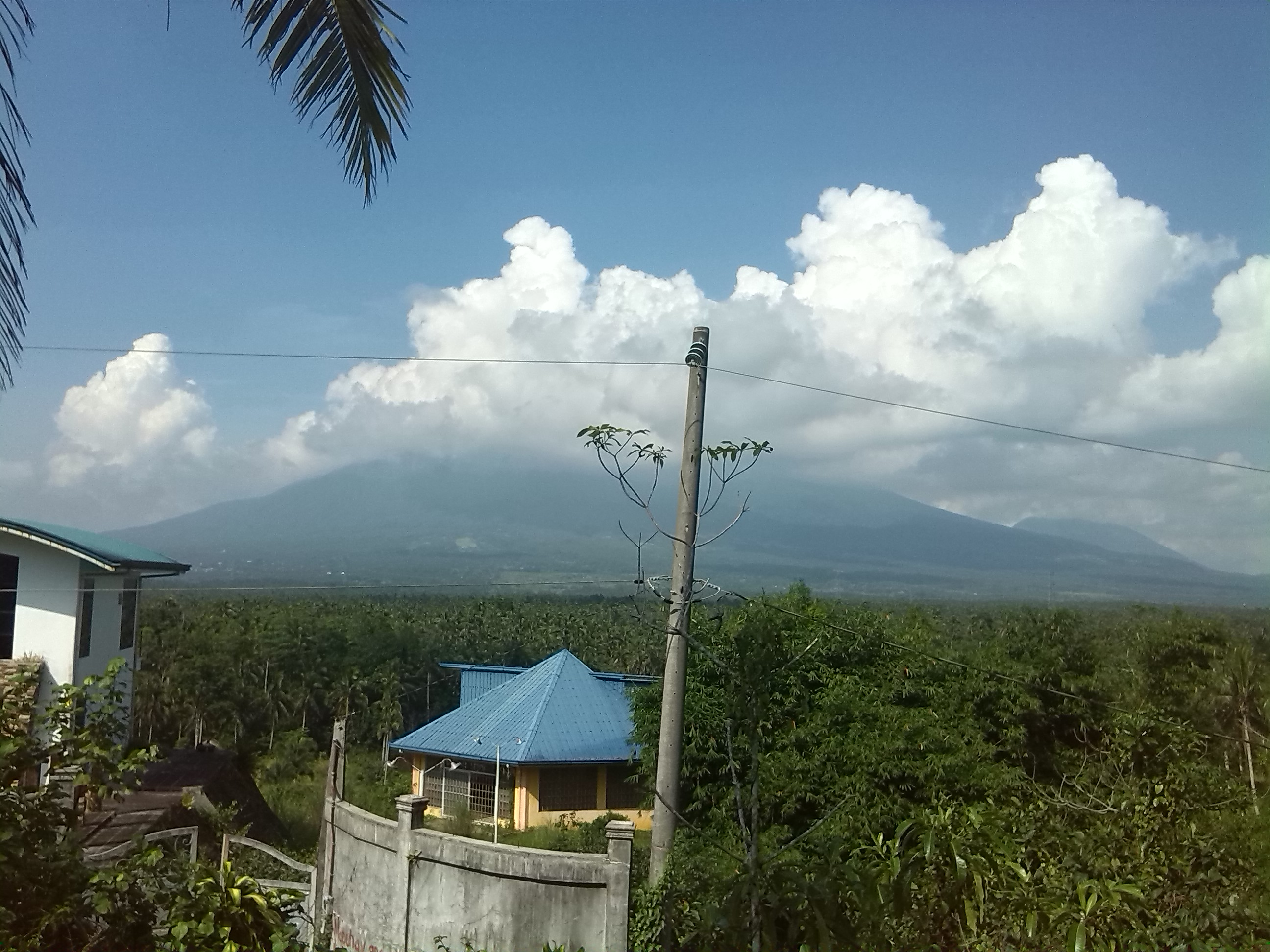 FOR SALE: Lot / Land / Farm Quezon