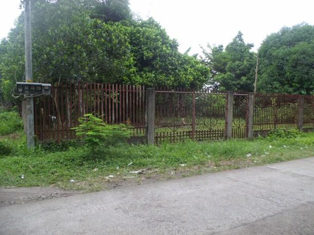 FOR SALE: Lot / Land / Farm Camarines Norte 1