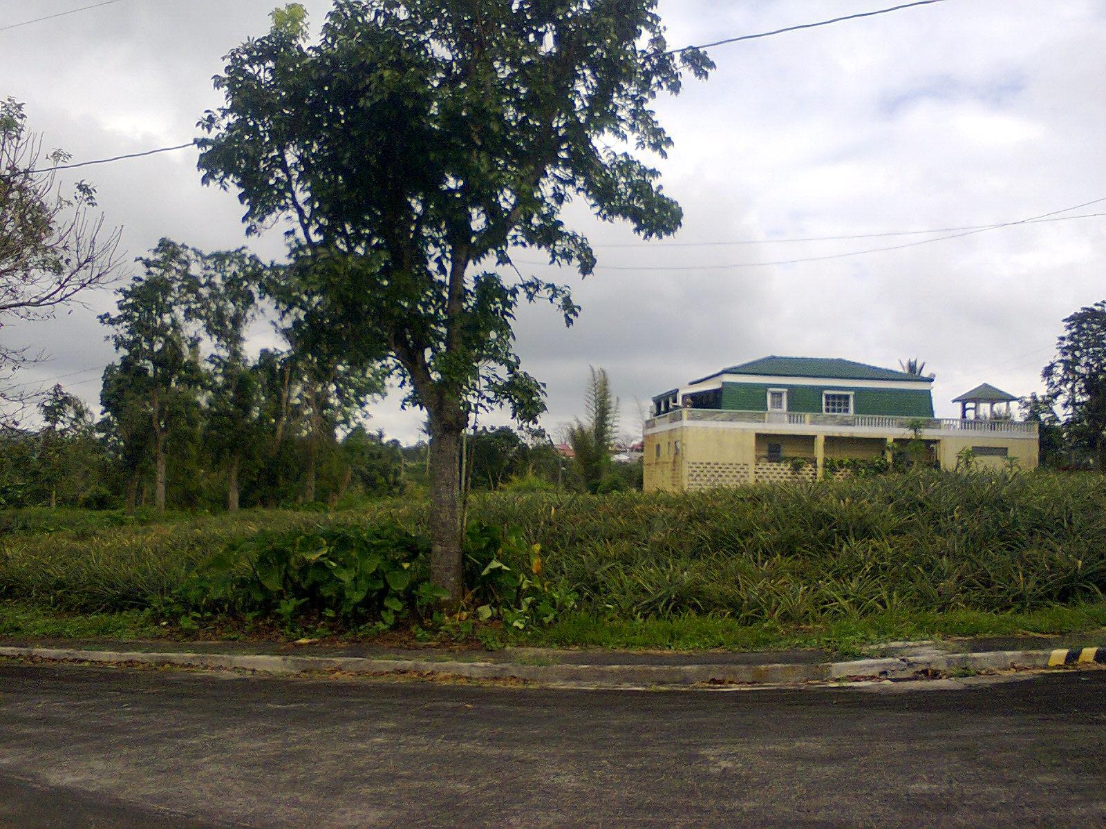 ph1_ house