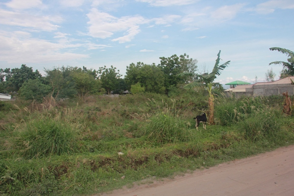 FOR SALE: Lot / Land / Farm South Cotabato > General Santos 2