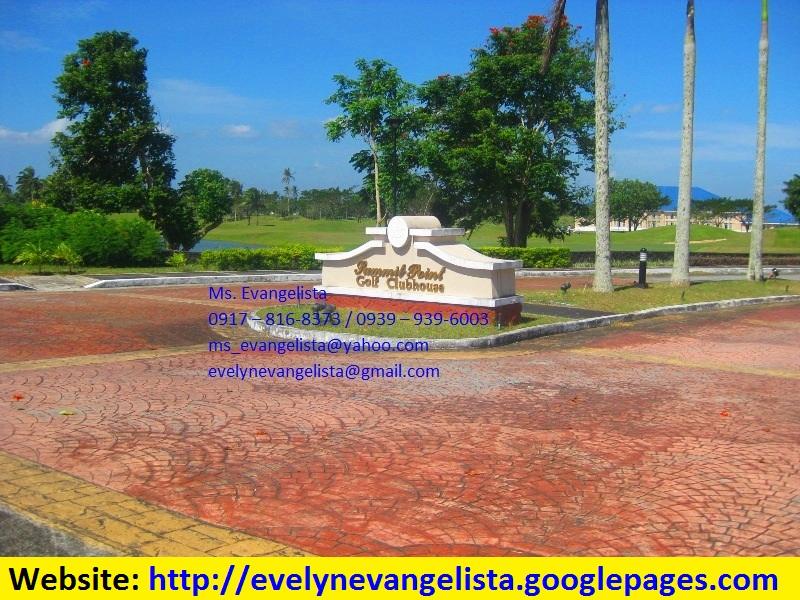 FOR SALE: Lot / Land / Farm Batangas 3