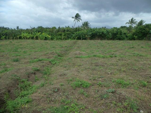 FOR SALE: Lot / Land / Farm Camarines Norte 2