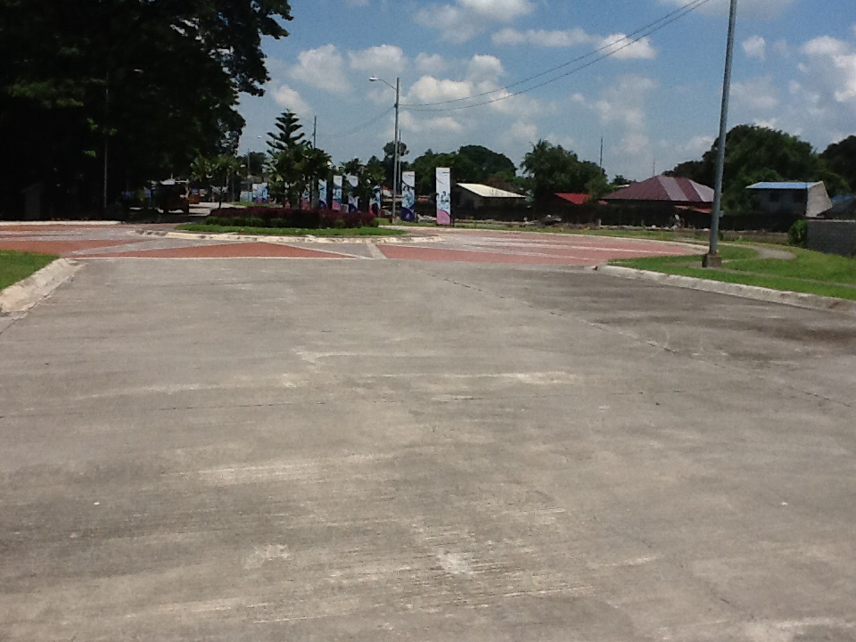 FOR SALE: Lot / Land / Farm Tarlac 3