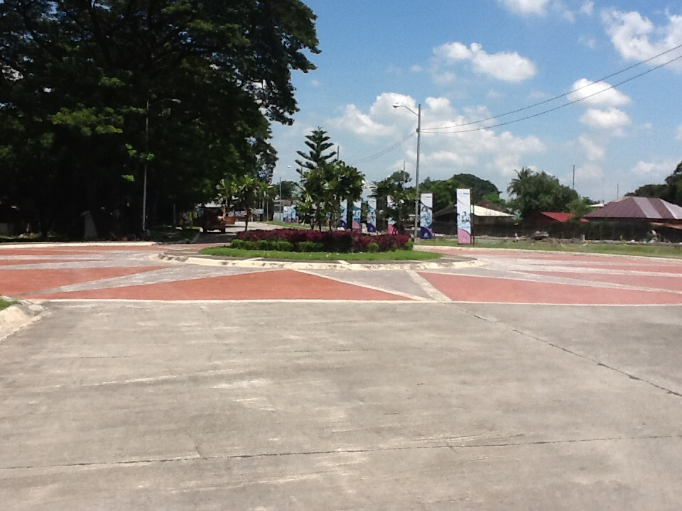 FOR SALE: Lot / Land / Farm Tarlac 5