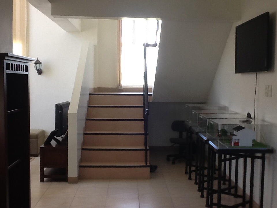 FOR SALE: House Tarlac 4