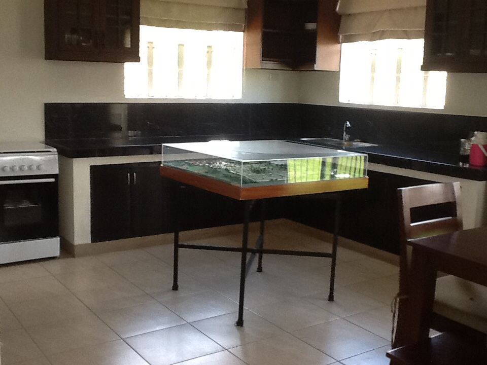 FOR SALE: House Tarlac 14